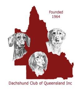 DCQ Logo Final