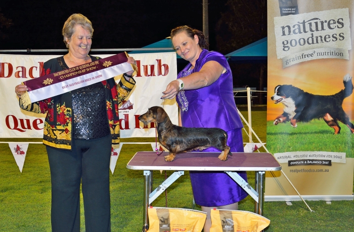 Aust Bred in Show